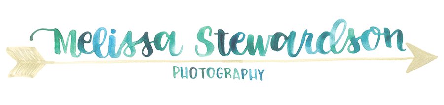 Melissa Stewardson Photography, Placentia, CA logo